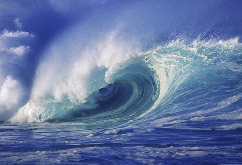 Breaking wave on north shore of Oahu, Hawaii Picture Photo