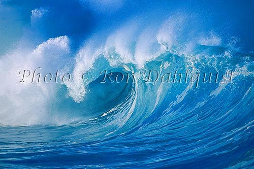 Wave on the north shore of Oahu, Waimea, Hawaii - Hawaiipictures.com