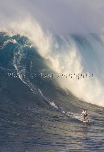 Surfer on a big day at Peahi, also known as Jaws, Maui, Hawaii MNR Picture