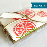 Citrus Bloom Note Card Set of Three