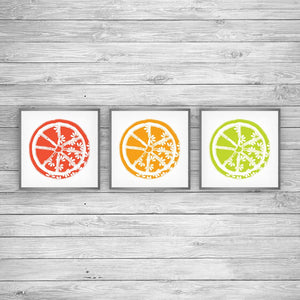 Citrus Bloom Art Prints