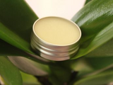 Luxurious and Therapeutic Shea Butter Natural Lip Balm .5 oz