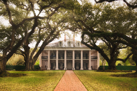 Oak Alley Plantation 24 x 18 Print