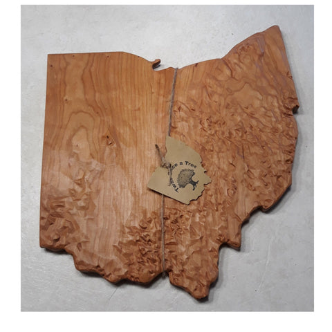Ohio 3D Topigraphical Map - Celebrate Local, Shop The Best of Ohio