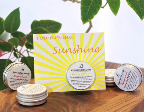 You Are My Sunshine Greeting Card with Lip Balm