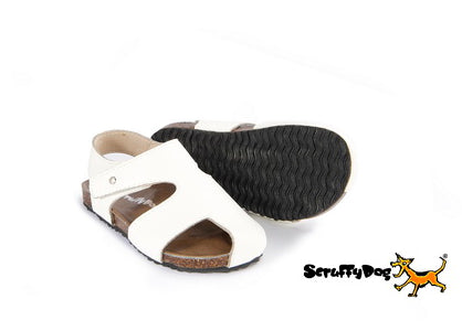 Scruffy Dogs Shoes /White