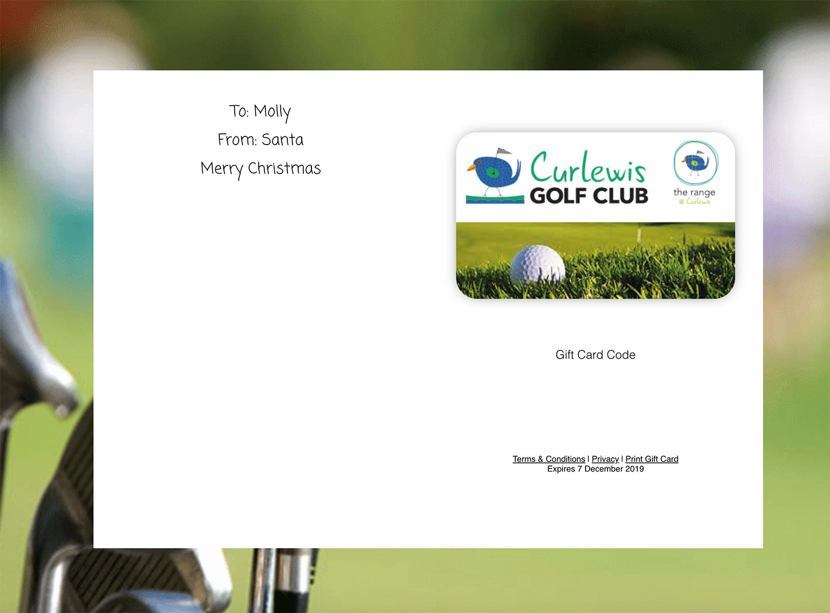 eGift Card - 1 Hr Lesson with Golf Pro