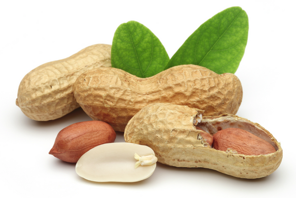 Allergy free peanuts for the future