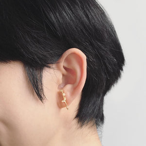 Scatter Earrings