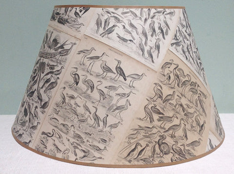 "18"" Ornithology lampshade"