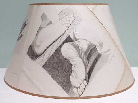 "16"" Anatomical lampshade"
