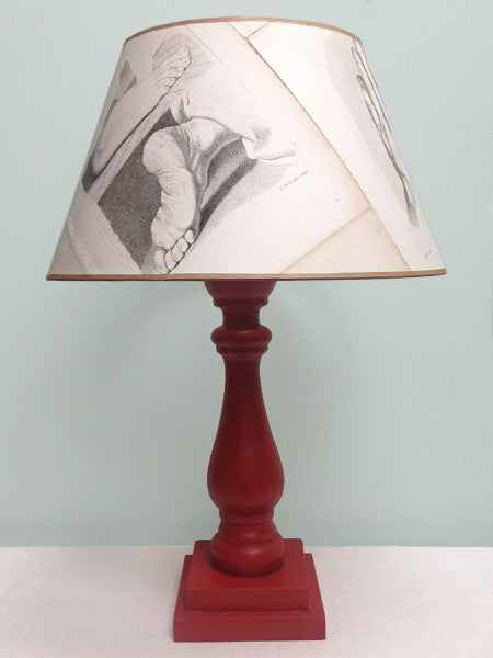 "16"" Anatomical Print (after Raphael) lampshade"