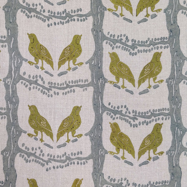 Bird chatter olive