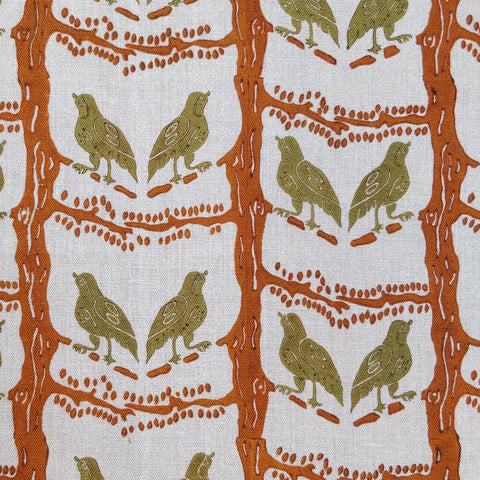 Bird chatter orange