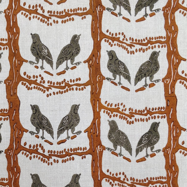 Bird chatter brown