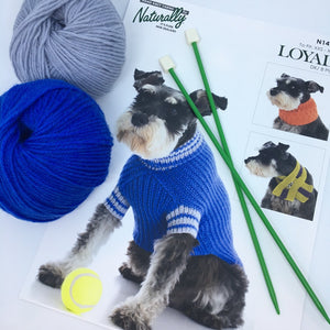 Dog Jumper Knitting Pattern