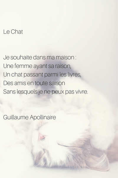 lea chat french poem and poet apollinaire