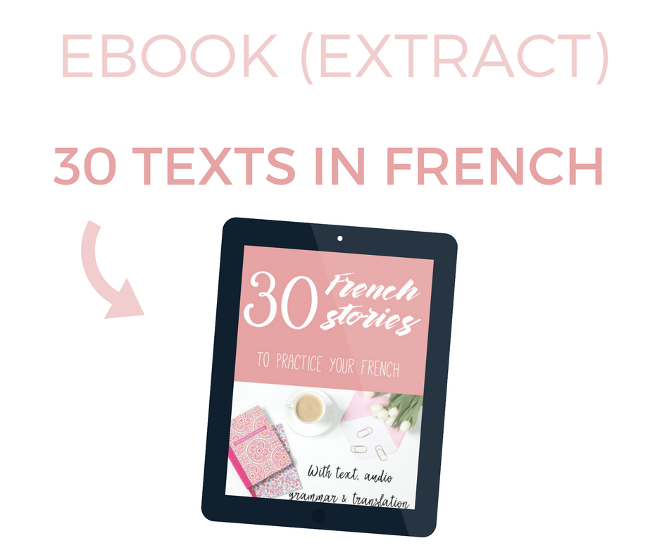 FREE EXTRACT - 30 stories to learn French - beginners