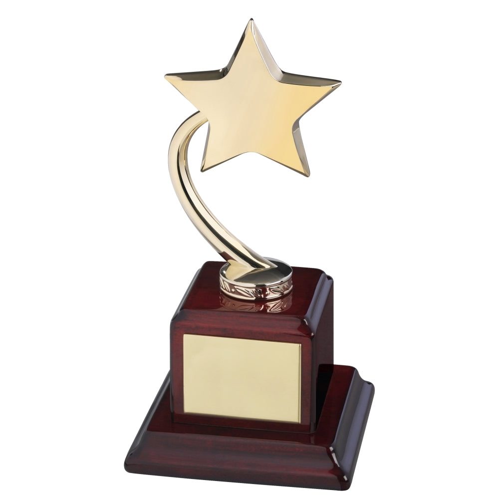 Rising Star Award on Wood Base - Bracknell Engraving & Trophy Services