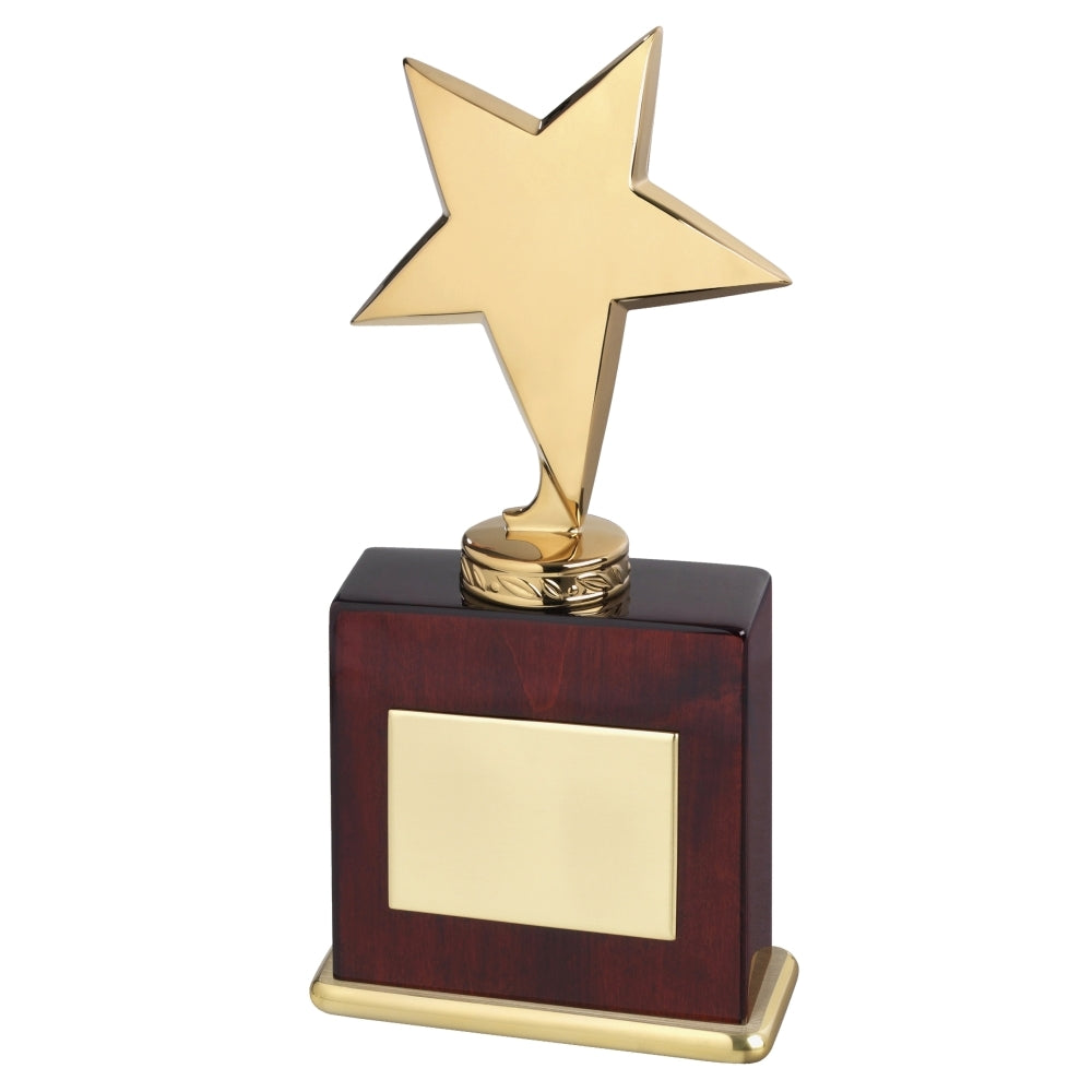 Bright Star Award - Bracknell Engraving & Trophy Services