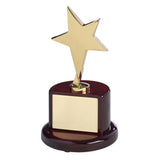 Bright Star Award on Round Base - Bracknell Engraving & Trophy Services
