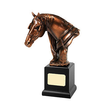 RW08 Horse Head - Bracknell Engraving & Trophy Services