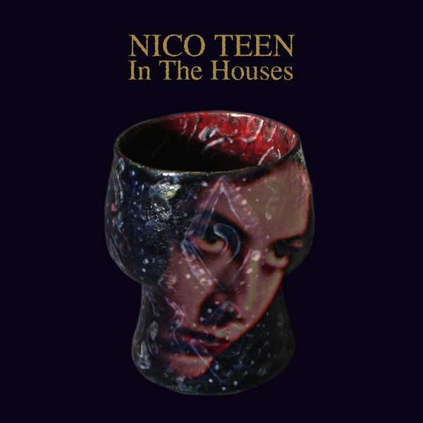 Nico Teen ‎– In The Houses
