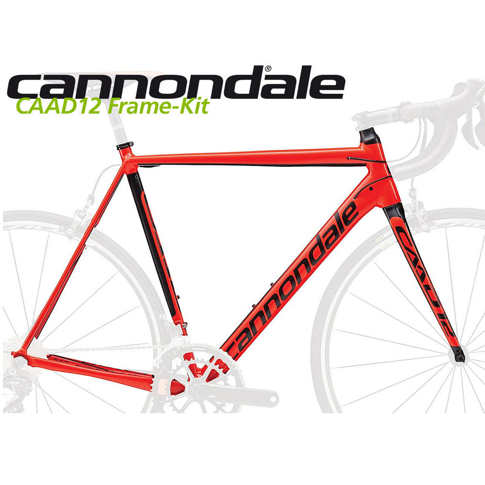 Cannondale Caad12 Road Frame and Fork