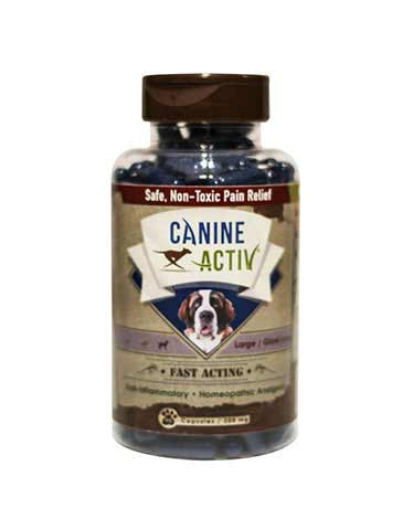 CanineActiv large/giant size dogs