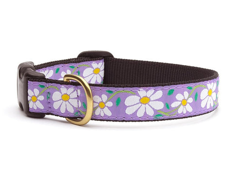 Up Country Collars: Daisy Medium