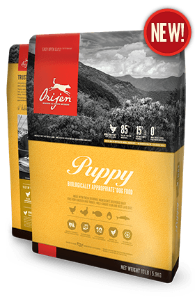 Orijen Dog Food: Puppy