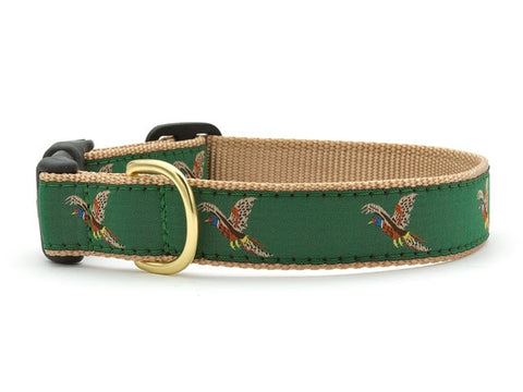 Up Country Collars: Pheasant Large