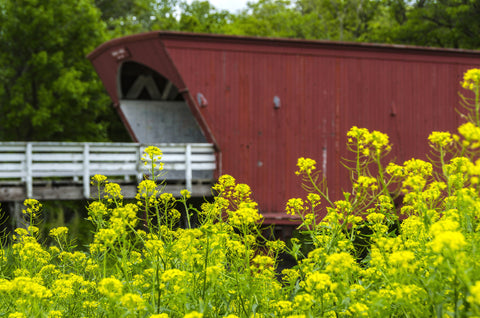 Hogback Covered Bridge 2