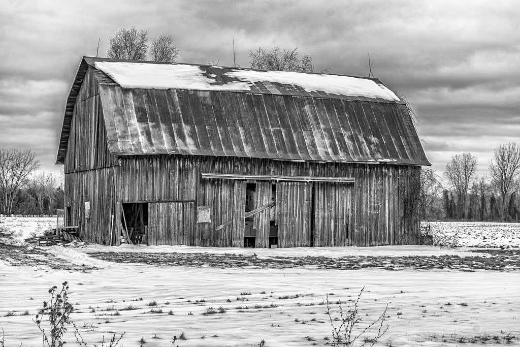 Michigan Barn 4 B&W