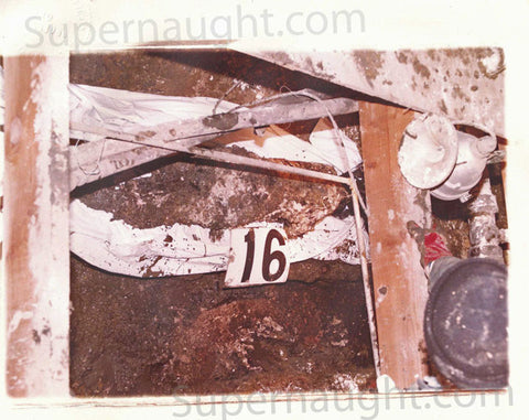 John Wayne Gacy trial exhibit crawlspace photo - Supernaught True Crime Collectibles