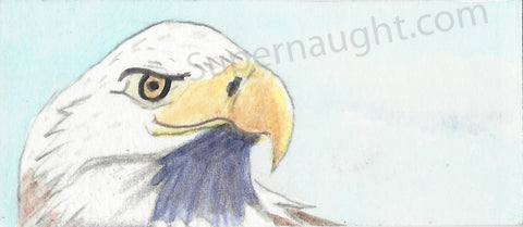 Roy Norris Hand Painted Bald Eagle Bookmark Signed