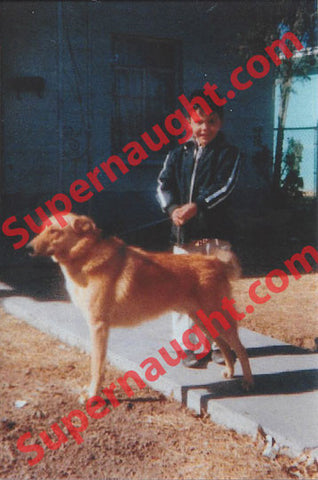 Richard Ramirez color childhood photo with his dog - Supernaught True Crime Collectibles