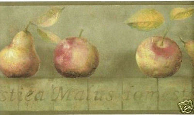 York Green Faux w/ Pears & Apples Wallpaper Border - YR9424B