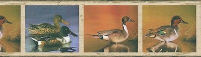 Brewster Ducks Wallpaper Border - 93776FP