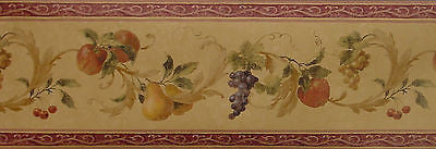 Seabrook Acanthus Fruit & Leaf Scroll Wallpaper Border - A653978B