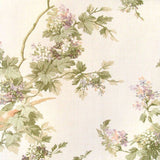 Chatham House Trailing Hibiscus with Birds Wallpaper  - 48384