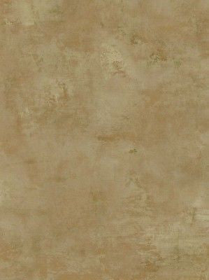 Coventry Park Camel Colored Faux Wallpaper - VN60603