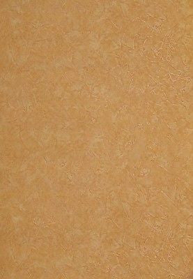 Warner Burnt Orange Smeared Plaster Look Wallpaper - ENC. 4087