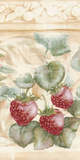 Brewster Strawberry Vine Wallpaper Border - 81B66118