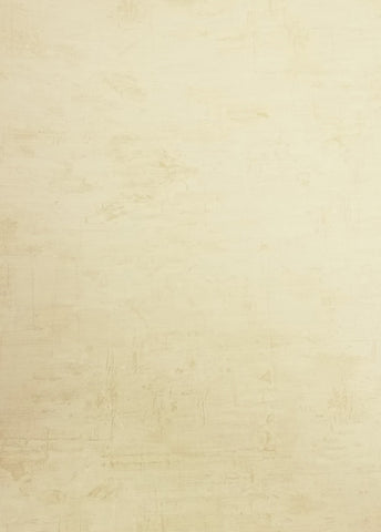 Beacon House Light Cream and Tan Color Faux Wallpaper - 85-64343