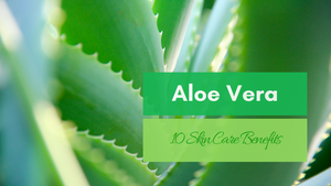 10 aloe vera skin care benefits