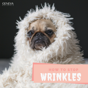 How to Stop Wrinkles Before They Form