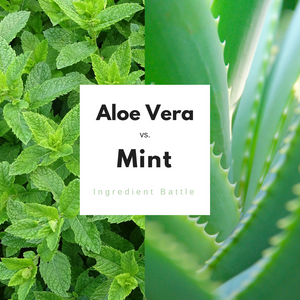 aloe vera vs mint ingredient battle