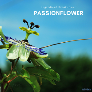 ingredient breakdown passionflower