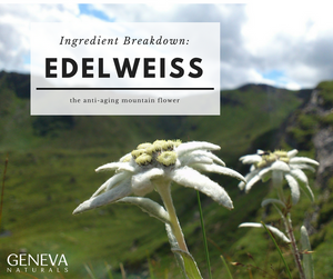 Ingredient Breakdown: Edelweiss